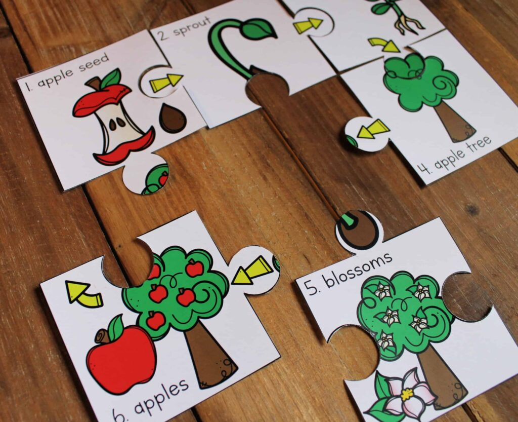 Life Cycle Sequencing Puzzles Bundle