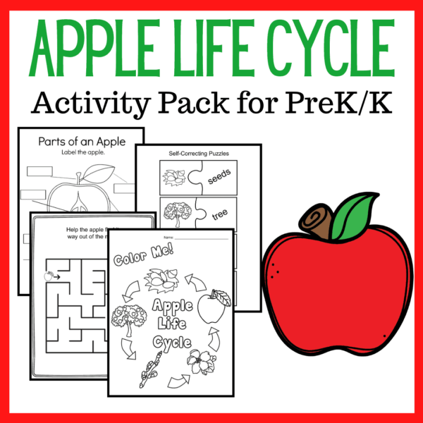 Apple Life Cycle Printable