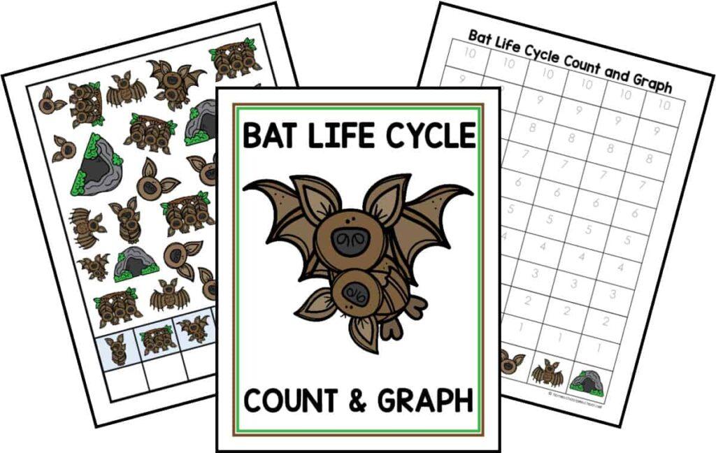 Bat Life Cycle Count and Graph