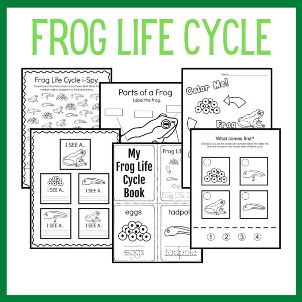 Frog Life Cycle Preschool Activities