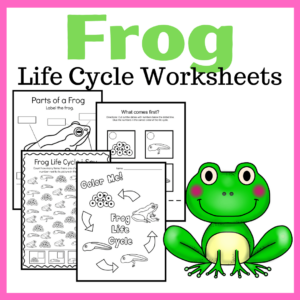 Frog Life Cycle Preschool Activities