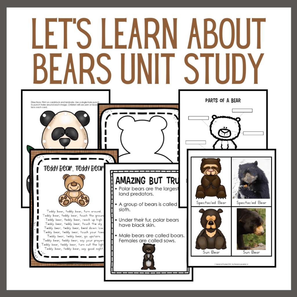 Let's Learn About Bears Preschool Unit Study