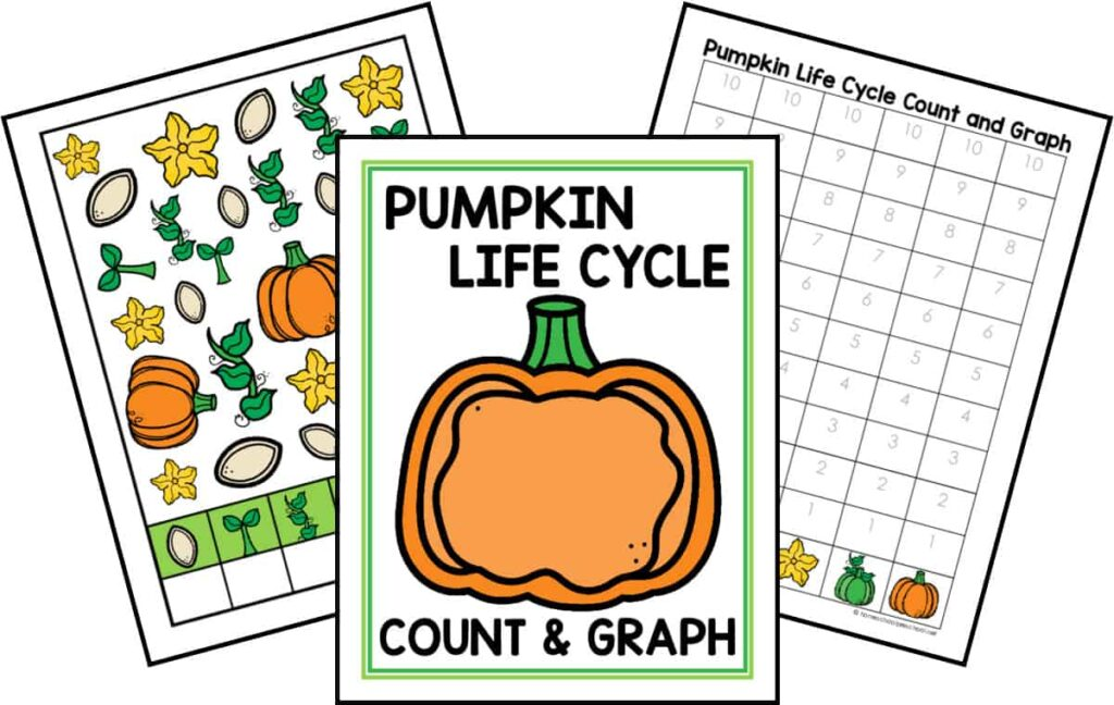 Life Cycle Count and Graph Bundle