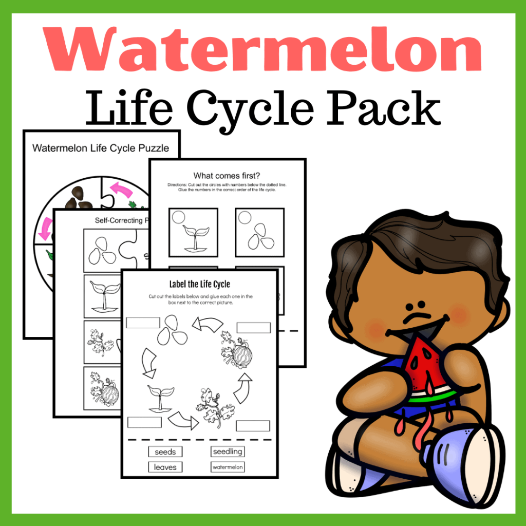 Life Cycle of a Watermelon